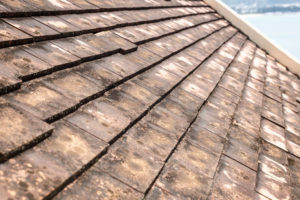 Get An Roofing Insulation Inspected When Roof Mold Is Present
